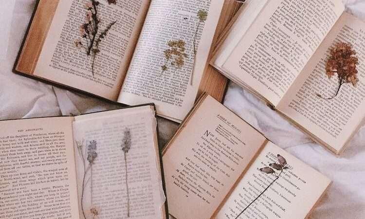 Είσαι και εσύ βιβλιοφάγος;